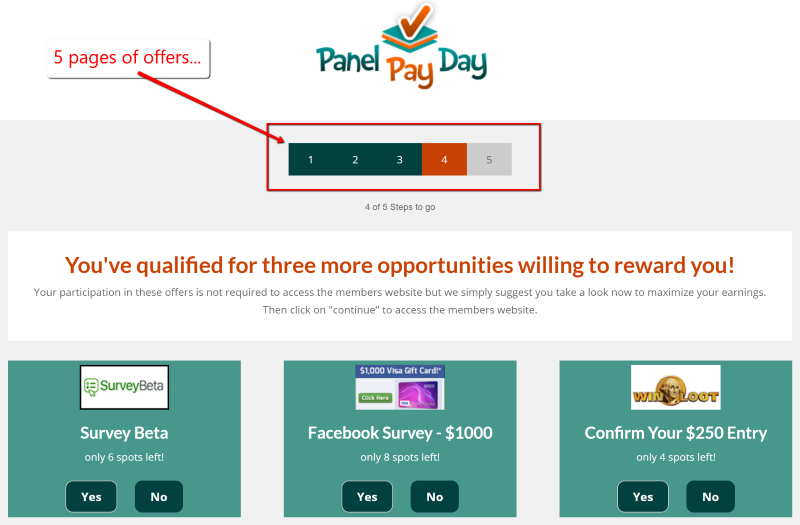 5 Pages of Panel Payday Offers