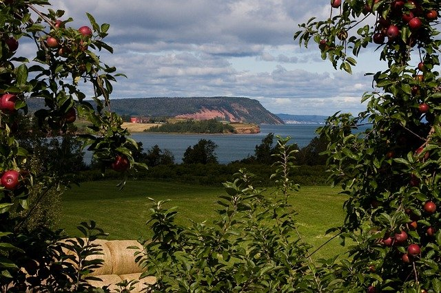 Blomidon Nova Scotia Apple Orchard