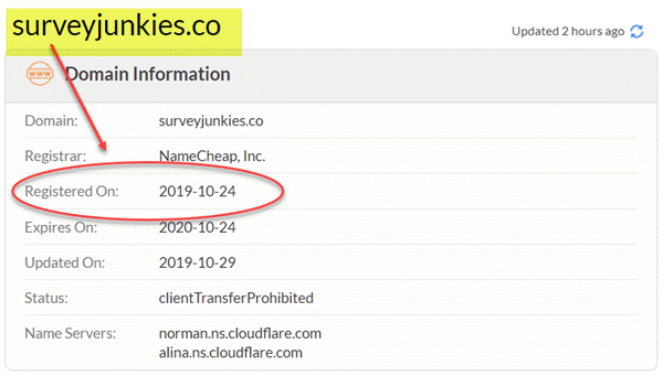 surveyjunkies domain registration